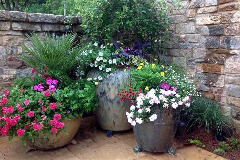Cluster of Glazed Pots with Flowers, Garden Architects, Inc.
