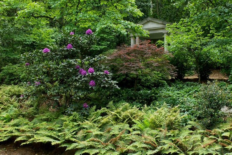 Shade Garden in Buckhead Estate, Garden Architects, Inc.