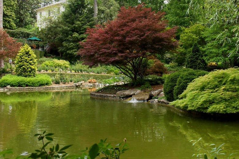 Garden Pond and Japanese Maples, Garden Architects, Inc.