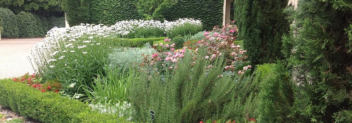 Planting-Design-Garden-Architects-Inc