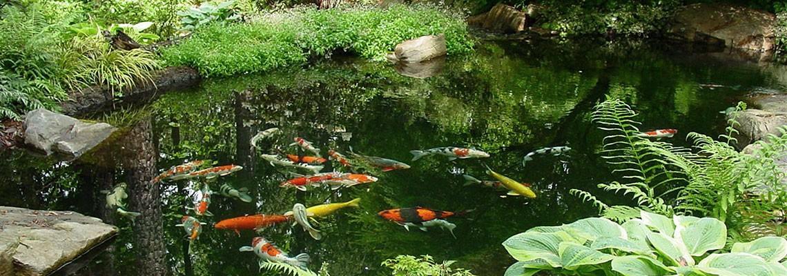 Water-in-the-Garden-Portfolio-Garden-Architects-Inc